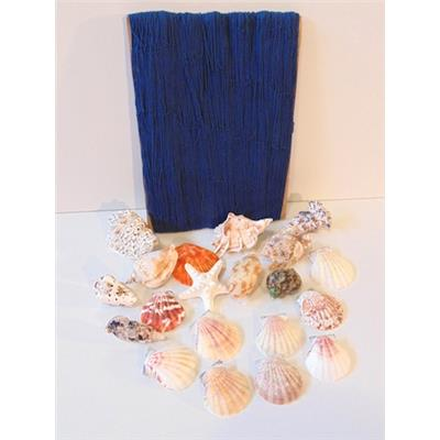 Ensemble filet bleu et 20 coquillages crochets